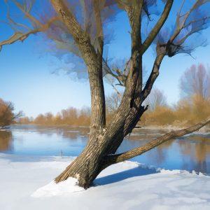 Winter river landscape. Nature composition.