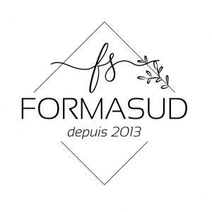 Logo fs 2020