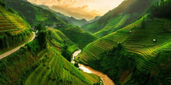 Massage Vietnamien